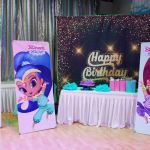 shimmer and shine party decorations toronto